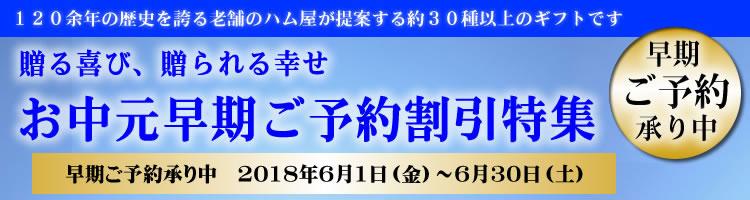 最大10%OFF!!鎌倉ハムの夏ギフト早割特集